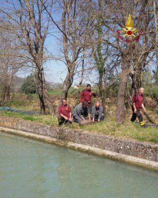 capriolo serra san quirico zona san'elena canale scolo