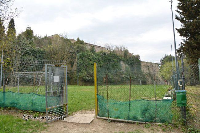 Ufficio Verde Comune Di Ancona : Via goito a dimora nuovi alberi