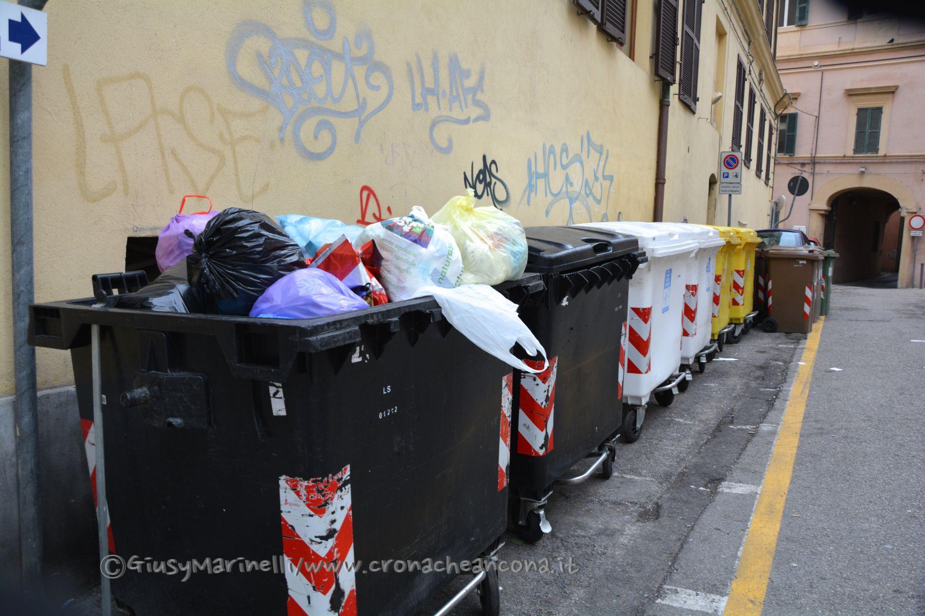 Ufficio Verde Comune Di Ancona : Palestra persiani comune di ancona