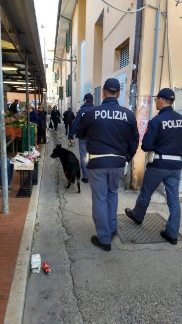 Blitz della polizia al piano tre tunisini espulsi for Questura di ancona permesso di soggiorno