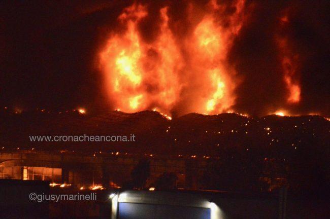 incendio_porto-DSC_2141-650x432