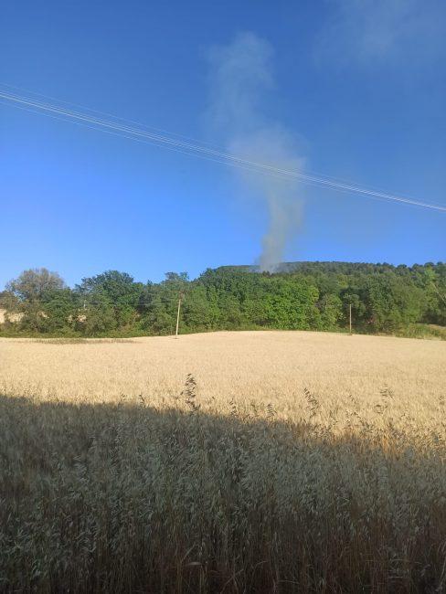 incendio-emilia-2-488x650