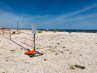 spiaggia rocca mare dog free cani falconara