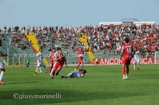 Ancona-Lucchese-del_Conero-DSC_8410-325x216